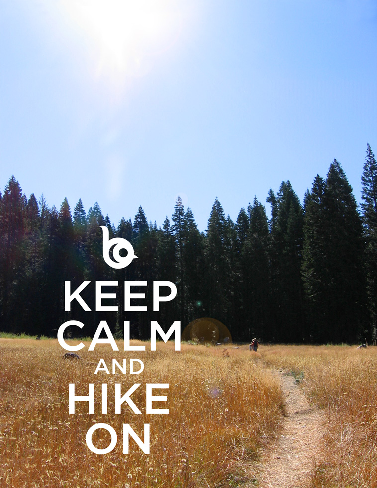 Hiking meme